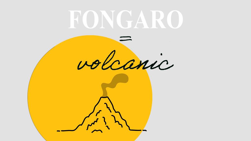 Visita a Fongaro